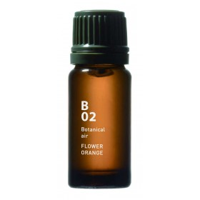 B02 Flower Orange